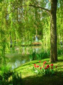 Answer: Who cares about the metric system when I can hang out in Claude Monet's garden.