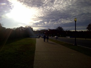 Arlington-20131111-00343