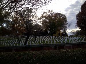 Arlington-20131111-00346